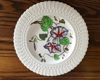 CAULDON BONE CHINA Floral Plate - Multi-Colour Morning Glories - Made in England - 2482