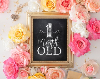 12 Monthly Age Photo Prop Signs - Instant Download - Set of 12 - 1 Month to 1 Year - Chalkboard style printable- Instant Download - SKU:503