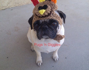Turkey Hat-Thanksgiving-Costumes for dogs-Cute dog hats-Pugs-dog hats-funny dog hats-holiday hats for dogs-turkey hat-pugs hats