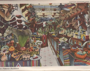 "The Famous Buckhorn Curio Store, San Antonio, TX-8x10"" Color Enlarge of Postcard"