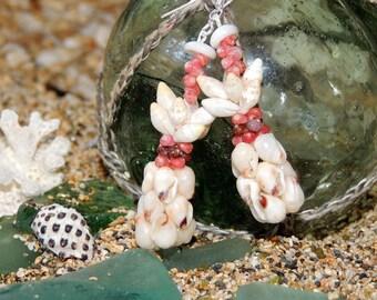 Kahelelani & Momi pineapple shell earrings/ShellsHawaii