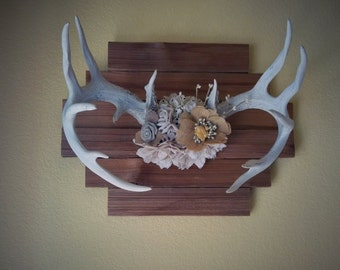 SALE** Authentic Antlers, Shabby Chic Floral Antlers, Woodland Decor, Shabby Chic Decor, Antler Art, Antler Nursery Art