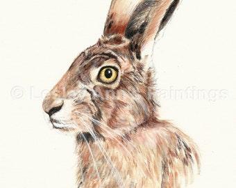 Hare acrylic A3 original painting