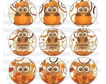 Pumpkin patch owl fall Bottle cap image
