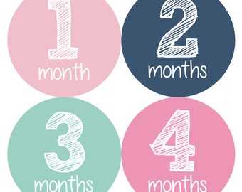 Baby Monthly Stickers, Monthly Baby Stickers, Baby Milestone Stickers  - Baby Girl, Baby Shower Gift, Baby Month Stickers Girl, Baby Girl