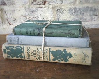 Vintage book stack green/blue