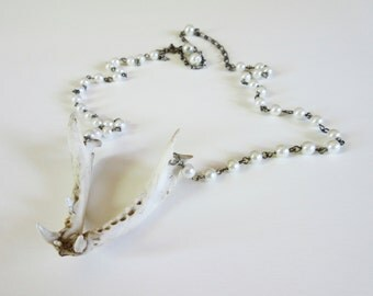 Raccoon jawbone pearl pearlescent bone necklace animal chain