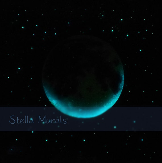 Glow Stars For Ceiling: Glow In The Dark Star Ceiling Moving Moon And By StellaMurals