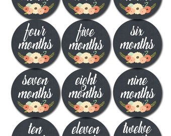 Monthly Baby Stickers Baby Month Stickers Baby Girl Monthly Shirt Stickers Monthly Baby Sticker Girl Baby Shower Photo Prop Milestone 1103