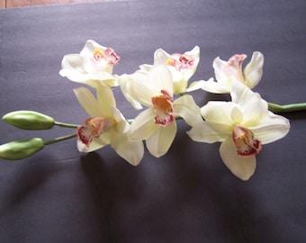 "White Cymbidium Orchid Silk Flower 35"" L Stems"