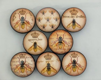 Set of 8 Queen Bee Cabinet Knobs