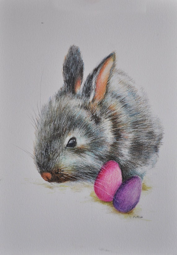 Original Drawing Colored Pencil Rabbit Easter Bunny Portrait