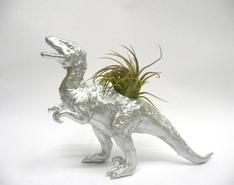 Silver Velociraptor Dinosaur Planter with Air Plant // Coworker Gift // For Her // For Him