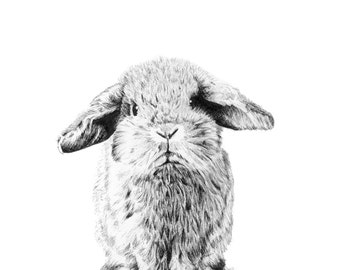 """Rabbit Print - Muffin - 8 x 11"""" - home, wedding or Mother's day gift -"""