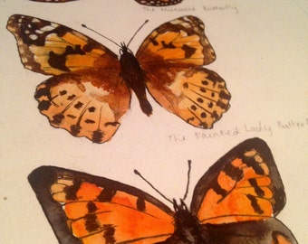 British Butterflies, Orange series, originalt watercolor painting