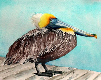 original bird painting bird art  Pelican watercolor painting by Betty Moore