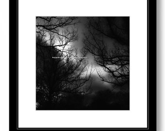 MYSTERIOUS LANDSCAPE, Black and White Nature Photography, MAGICAL Forest, Fine Art Print, Home Wall Decor.