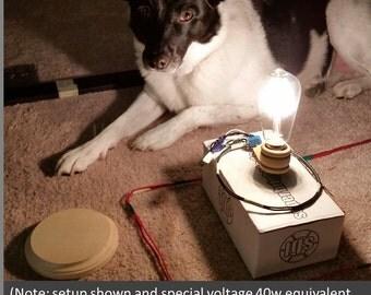DIY Wireless Power Hobby Electronics Kit