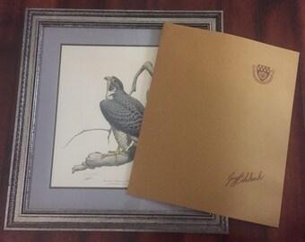 Guy Coheleach American Peregrine Falcon Framed Lithograph Print