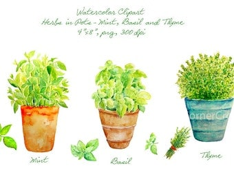 Watercolor clipart - Hand painted watercolor herbs in terracotta pots - mint, Basil and thyme printable instant download
