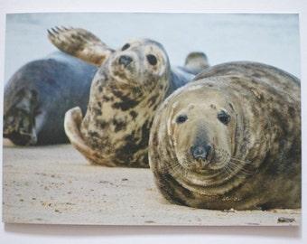 Stella and Stan Seals greeting card