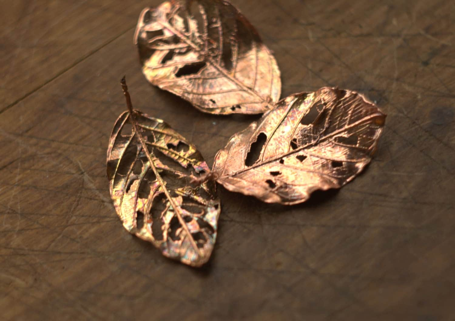 Perforated Metal Leaves Real Leaves Electroformed With