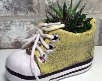 """Baby Shoe Planter with Live Plant - 5 x 2 x 4.75"""" - Yellow"""