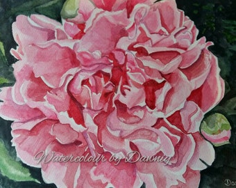 Original watercolour, not print, pink peony, flower,  one of a kind painting,  A4 size