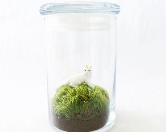 Caticorn Moss Terrarium, Glass Terrarium Jar, Unicat Terrarium, DIY Terrarium Kit