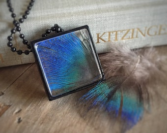 Peacock Blue Feather Necklace - Terrarium - Fairy Black Glass Frame - Woodland Real Flower - Mori Girl - Two Side - Square - Feathered
