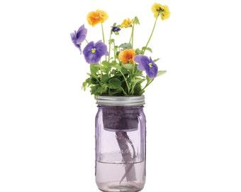 Mason Jar Flower Kit - Self-Watering Planter for Growing Pansies