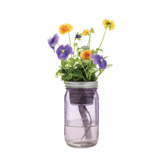 Mason Jar Flower Kit Self Watering Planter For Growing