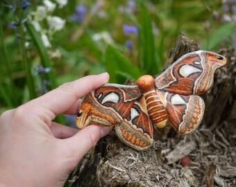Atlas Moth Ornament