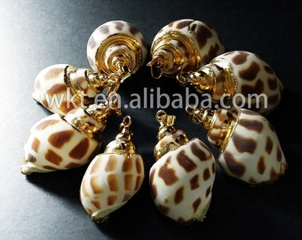 WT-P319 Natural trumpetshelly pendants , gold plated sea shell pendant jewelry