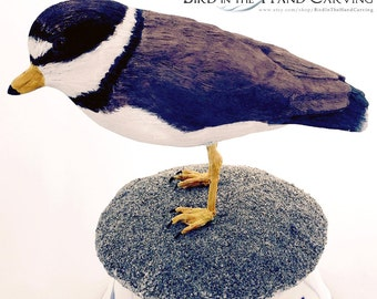 semipalmated plover carving