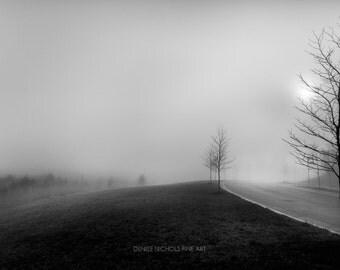 Black and White Photography, Fine Art, Winter, Fog, Landscape, Home Decor, Office Decor, Wall Art