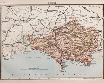 Antique Map of Dorset. Encyclopedia Britannica, 1870s