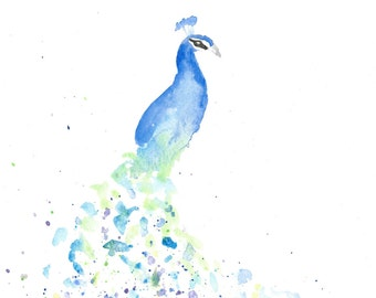White Peacock Watercolor