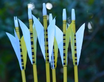 Archery Arrows, youth arrows, Poplar shafts set of 6 yellow and black for kids with bonus finger tab