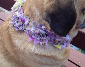 Shabby Purple Rose pet collar