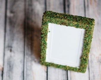 Moss Frame//picture frame//5x7 frame//desk accessories