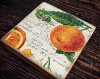 WOODEN COASTER - Orange Fruit Vintage
