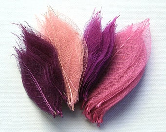 Shades of Pink and Purple - Pack of 100 Skeleton Leaves