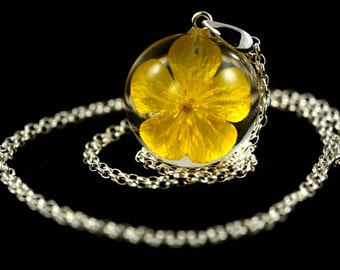 Unique pendant with real bulbous buttercup (Ranunculus bulbosus) in the resin sphere on a silver chain. Sphere 2.5 cm or 3 cm. Chain 80 cm.