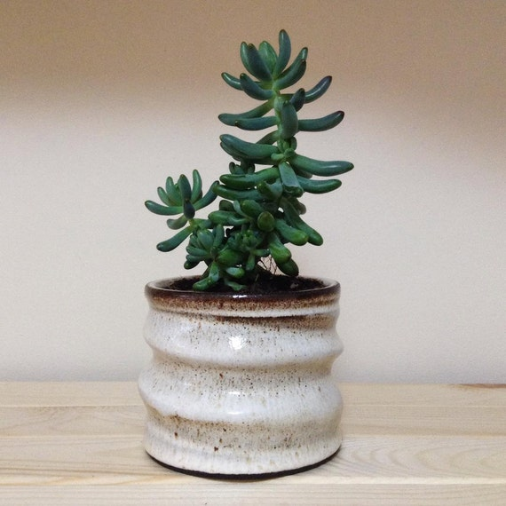 Ceramic Cylinder Rustic Planter Black Clay Air Plant