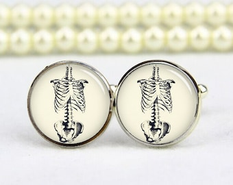 Skeleton Torso Anatomy Cufflinks, vintage anatomy cufflinks, human skeleton, anatomist cufflinks, doctor cufflinks, personalized cufflinks