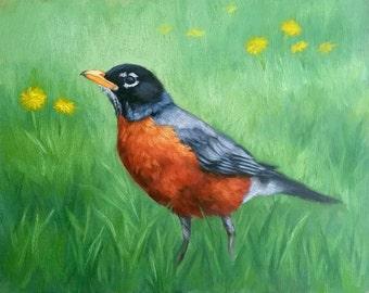 American Robin - Robin - Bird painting - Morning robin - Bird print - Open edition print