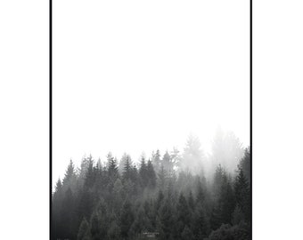 walk through the FOREST - A3 Artprint - Poster