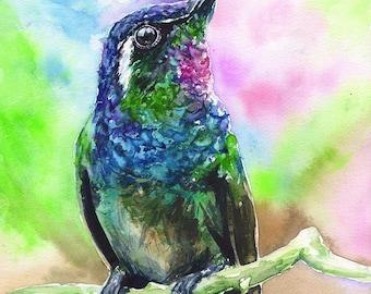Hummingbird watercolor Print of the Original painting Cute  Art Ruby-throated  home decor Bird hummer  songbird wildliife