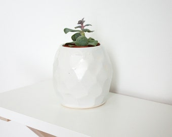 White Textured Ceramic Succulent Planter by Barombi Studios